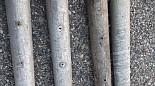Hliníkové zemnící kolíky s bronzovou špičkou