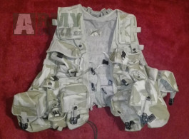 Taktická vesta MOLLE DPM desert