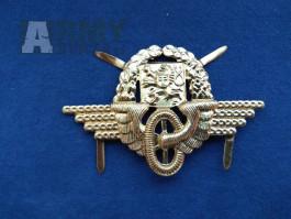 železniční čepicový odznak zlatý