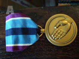 US medaile (Humanitarian service medal)