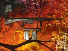 P&J SR25 + ASG M15 DEVIL carbine + ACOG