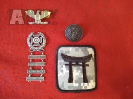 Americké odznaky