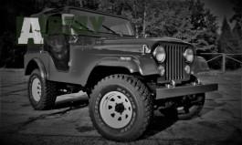 Jeep Willys CJ5 1975 L6, 4,2L
