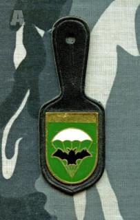 shání insignie 2.PzPr