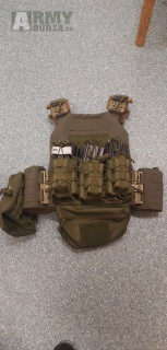 Combat systems sentinel plate Carrier
